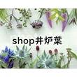 shop井炉葉